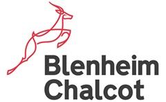 Blenheim Chalcot